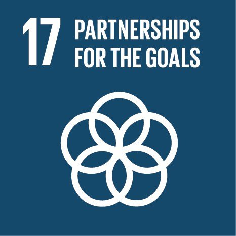 Strengthen the means of implementation and revitalise the global partnership for sustainable development